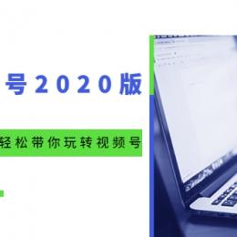 微信视频号2020版:魔力运营绝学,轻松带你玩转视频号(10节视频课)