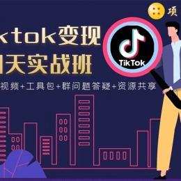 TIKTOK变现四天实战班:连怼技术+矩阵玩法赚,单账号月入2000美金(实操视频)