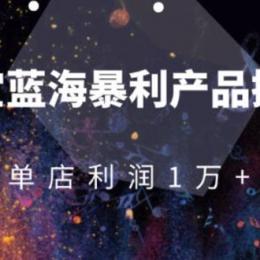 淘宝蓝海暴利产品操盘教程:从零到单店利润10000+详细实操(付费文章)