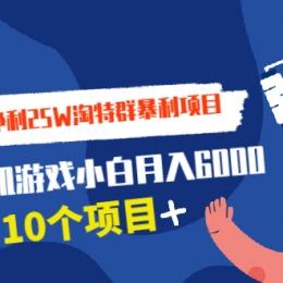 日出8万单 净利25W淘特群暴利项目+打包卖单机游戏小白月入6000 (10个项目)