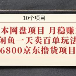 0成本网盘项目 月稳赚2W+闲鱼一天卖百单玩法+6800京东撸货项目 (10个项目)